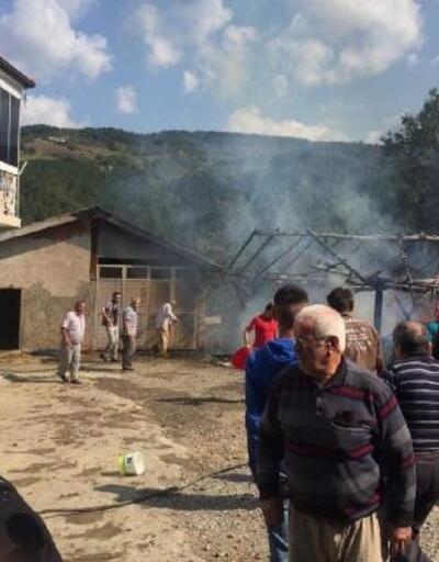 Safranbolu'da samanlık yandı