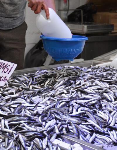 Karadeniz'den sevindiren haber... Fiyatı 5 lira düştü