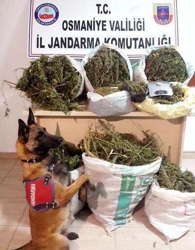 Sumbas'ta 22 kilo esrar ele geçirildi