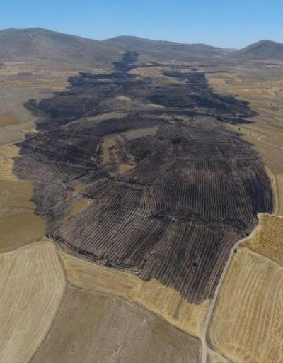 Tarım ve Orman İl Müdürü Şahin'den çiftçilere uyarı