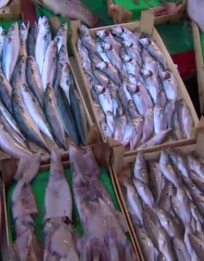 Hangi balık kaç liraya satılıyor?