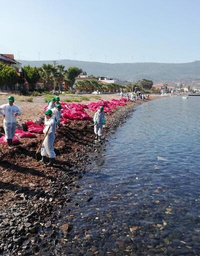 Foça'daki kirliliğe verilen ceza belli oldu