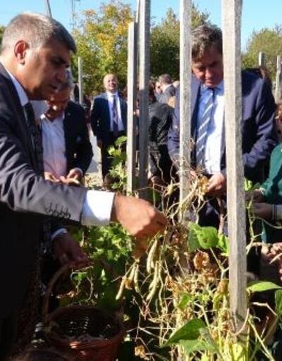 Karabük'te 'Ata Tohumu Ata Toprağında' projesi