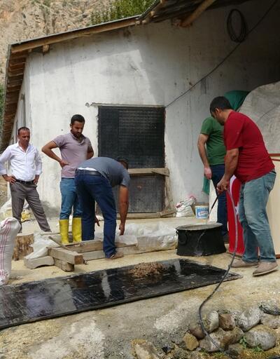 Çukurca'da, poşette askı sistemiyle ilk istiridye mantarı ekimi