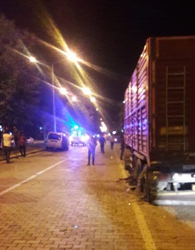 Ehliyetsiz sürücü TIR'a çarptı