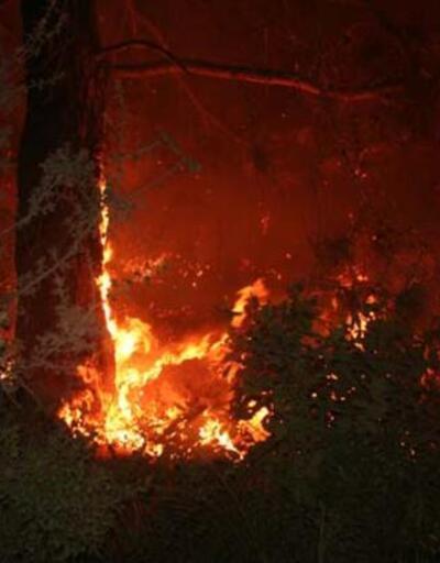 Mersin'de korkutan yangın! Evlere sıçrayabilir