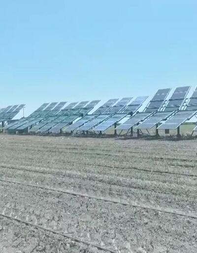 Tarımda teknolojik yenilik