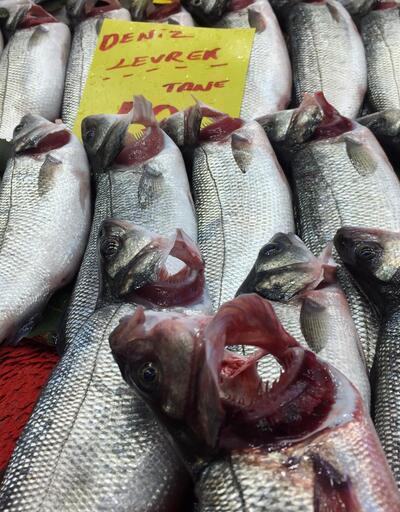Balıkta inanılmaz hile
