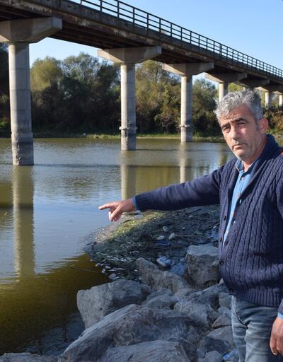 Bursa'da balık ölümleri devam ediyor! 'Buna dur denmesi lazım...'