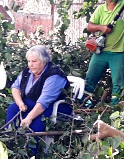 Evinin önündeki ağacın budanmasını engellemeye çalıştı