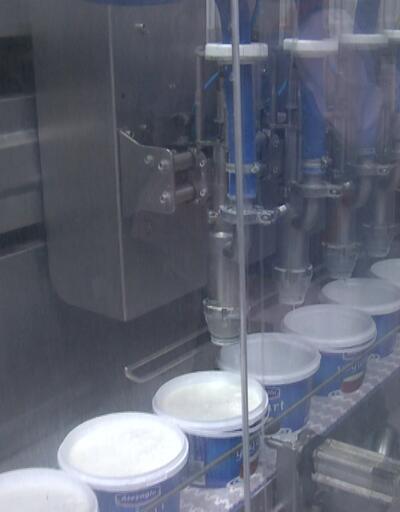Süt ürünleri mercek altında