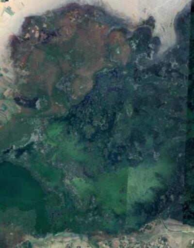 Eber Gölü'nde su, günden güne azalıyor