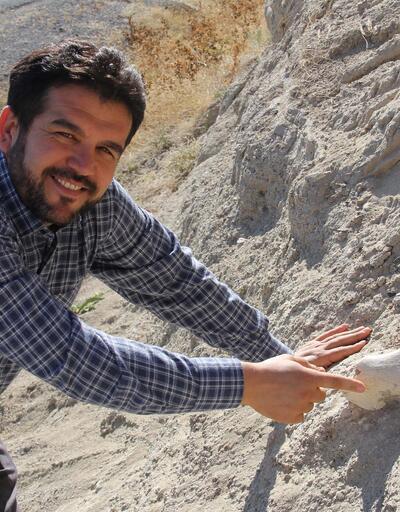 Yol kenarında 7.5 milyon yıllık fosil bulundu