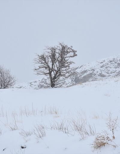 Hakkari'de kar ve sis etkili oluyor