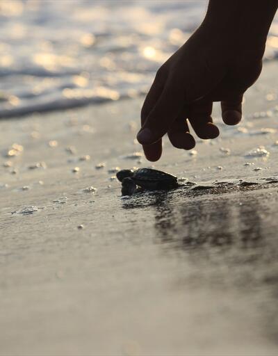 Güvenli bir şekilde denizle buluştular
