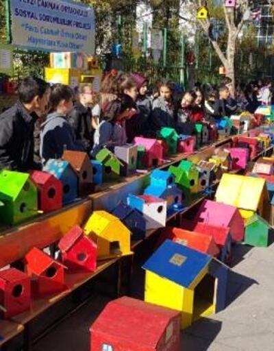 Öğrenciler, kuşlar ve kediler çin 400 yuva yaptı