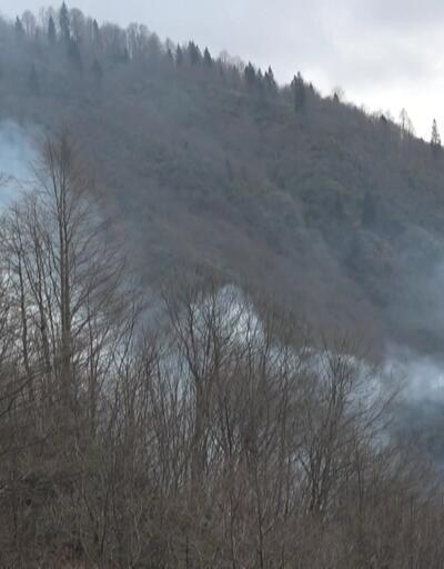 Orman yangınları 65 saatte söndürüldü
