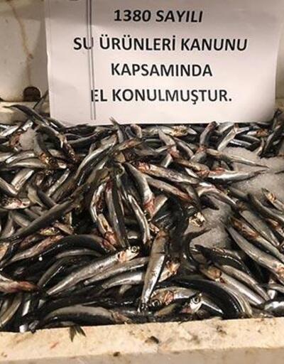 53 ton balığa el konuldu!
