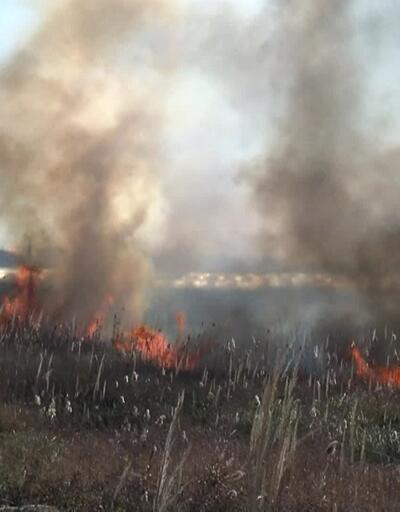 Antalya'da sazlık alan yangını