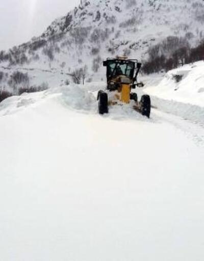 Bingöl'de kardan kapanan 179 köyü yolu ulaşıma açıldı