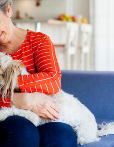 Evcil hayvan beslemek yüksek tansiyonu düşürüyor