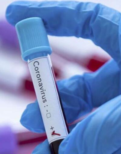 ABD'den koronavirüs aşısı açıklaması: Farelerde denemeye başladık