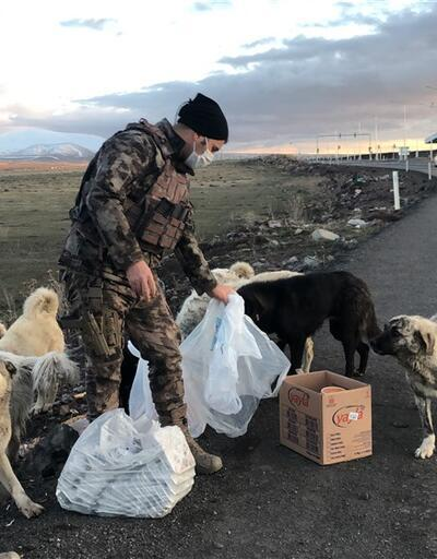 Aç kalan sokak hayvanlarını polis besledi