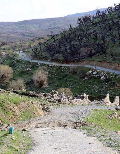 Güvenlik güçleri, 5 sivili şehit eden teröristlerin peşinde