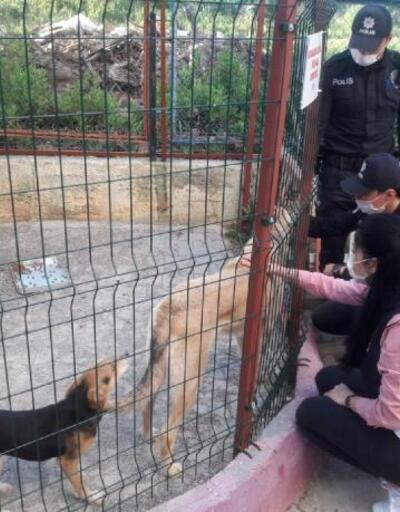 Okuldaki balık ve köpekleri polis besledi