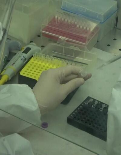 Virüs tüm organları tek tek ele geçiriyor!