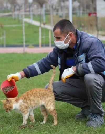 Aksaray'da sokak hayvanları unutulmadı