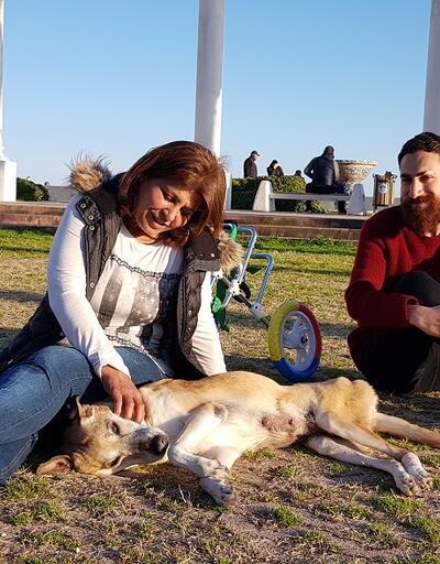 """Köpek Keyni ve caretta carette Hayri'nin hikayesi  """"Hayat Tamircisi""""nde!"""