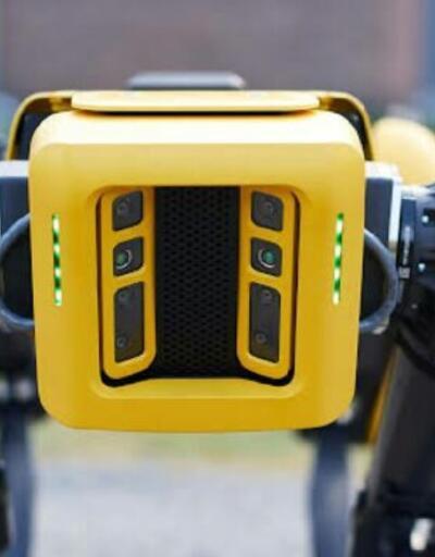 Boston Dynamics robotları sokağa indi