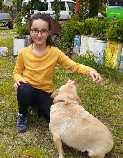 Minik Beren, kısıtlama sonrası köpeği 'Fındık'a koştu