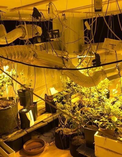 Sancaktepe'de uyuşturucu serasına dönüştürülen eve operasyon