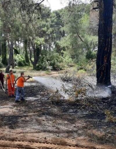 Sorgun Ormanı'nda yangın