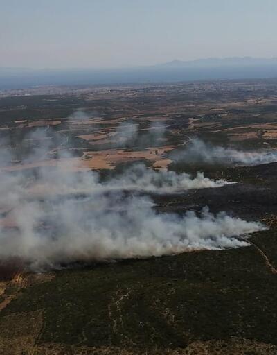 Aydın'da iki farklı bölgede orman yangını çıktı