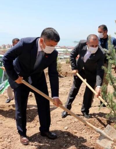 Erciş'te Kent Ormanı'na bin ladin ağacı fidanı dikildi