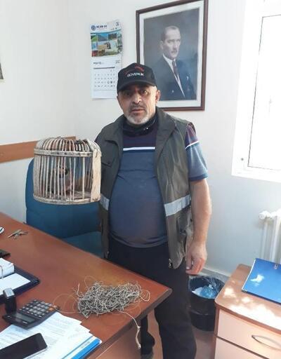Kaçak avcıya3 bin lira ceza