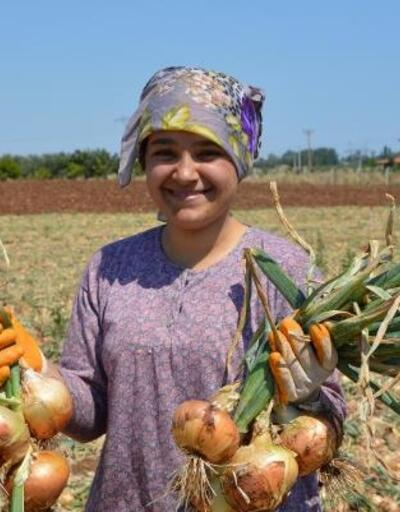 Soğan üreticisi, umudunu turizm sezonuna bağladı