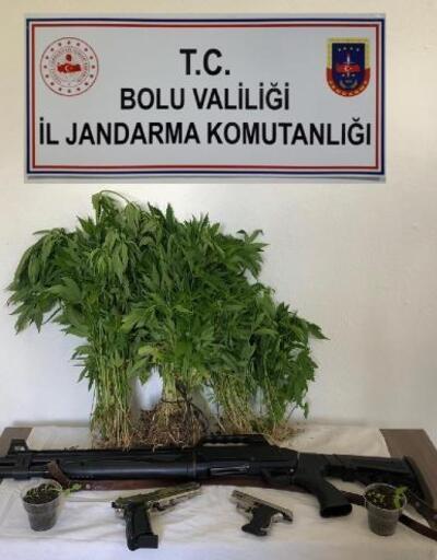 Jandarma, 411 hint keneviri ele geçirdi: 2 gözaltı