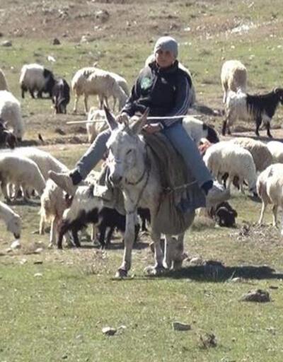 Kenenin ısırdığı çoban hayatını kaybetti