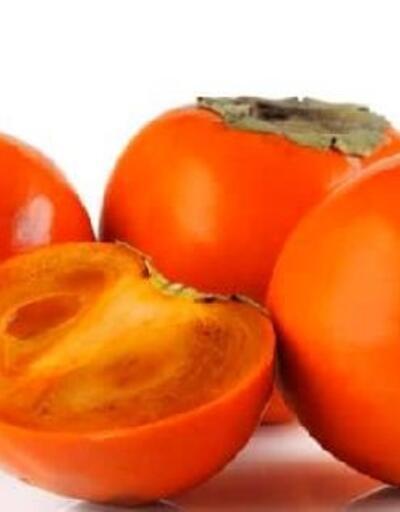 Güneyköy'de 'hachiya' ve 'aronya' bitkisi ekilecek
