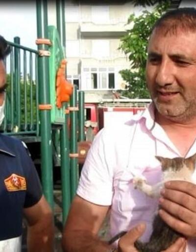 Tahterevalliye sıkışan kediyi itfaiye kurtardı