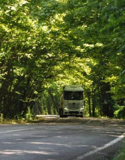 Ağaçların tünel oluşturduğu yola ilgi büyüyor