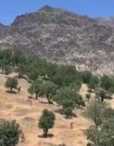 Son dakika... MSB: Irak'ın kuzeyinde PKK'lı 2 terörist etkisiz hale getirildi