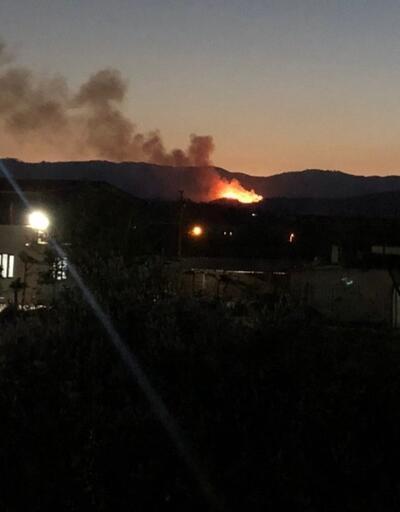 Son dakika haberi... İzmir'de orman yangını!