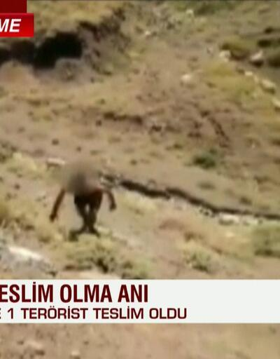 Son dakika... MSB: PKK'lı bir terörist teslim oldu   Video