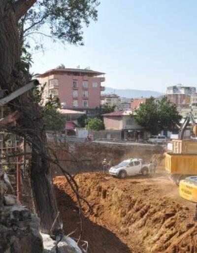 Yıkılma tehlikesi altındaki dut ağacına demir korunak