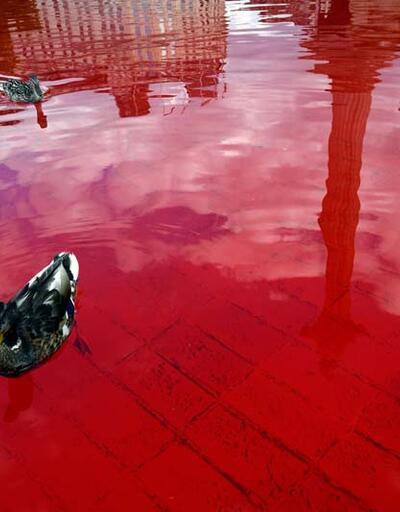 Londra'da protesto: 'İngiltere'nin elindeki kan'